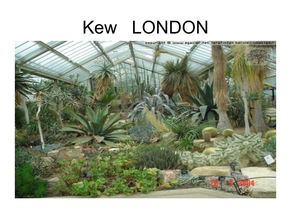 Kew LONDON
