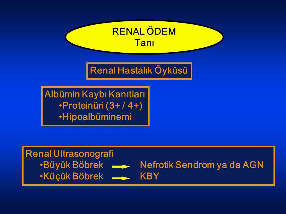 RENAL ÖDEM Tanı. Renal Hastalık Öyküsü. Albümin Kaybı Kanıtları. Proteinüri (3+ / 4+) Hipoalbüminemi.