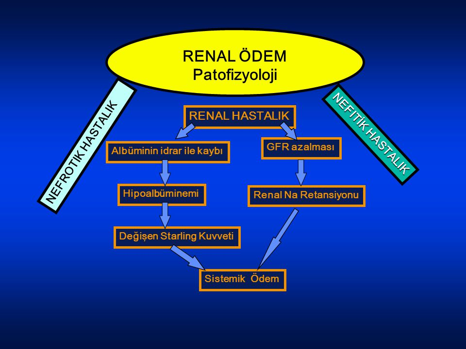 RENAL ÖDEM Patofizyoloji