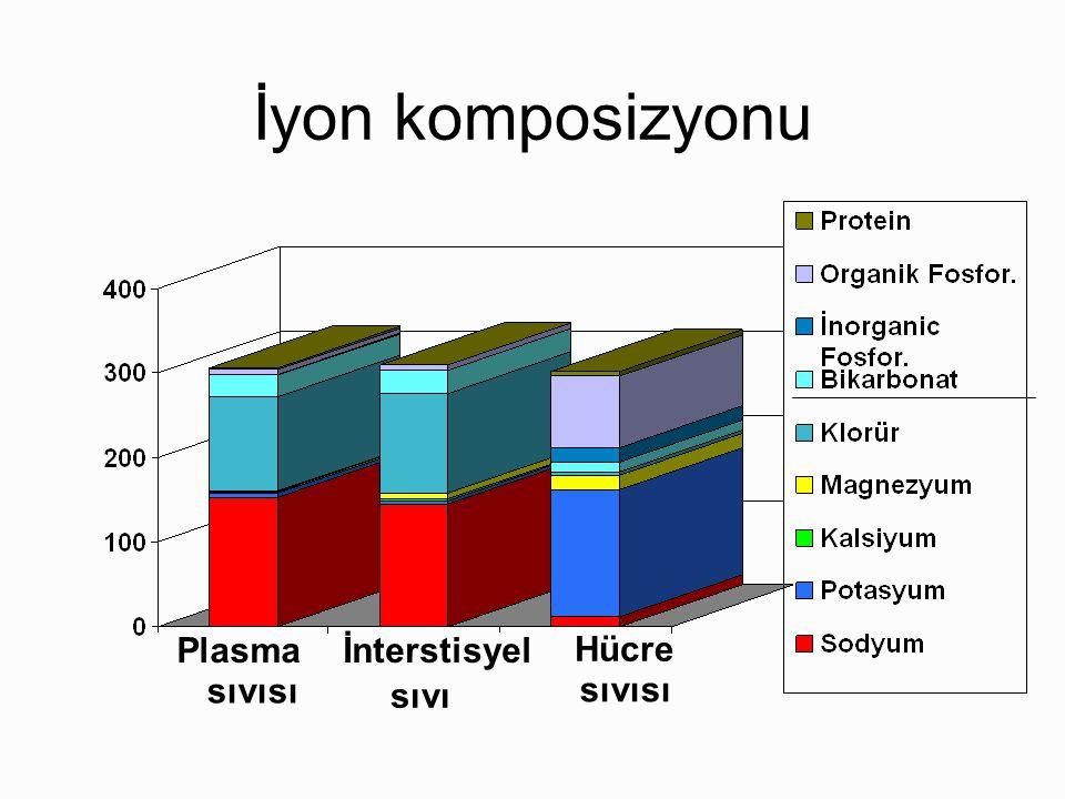 İyon komposizyonu Plasma sıvısı İnterstisyel sıvı Hücre sıvısı
