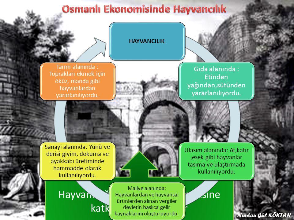 Osmanlı Ekonomisinde Hayvancılık
