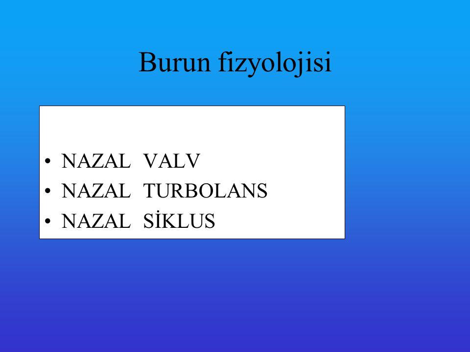 Burun fizyolojisi NAZAL VALV NAZAL TURBOLANS NAZAL SİKLUS