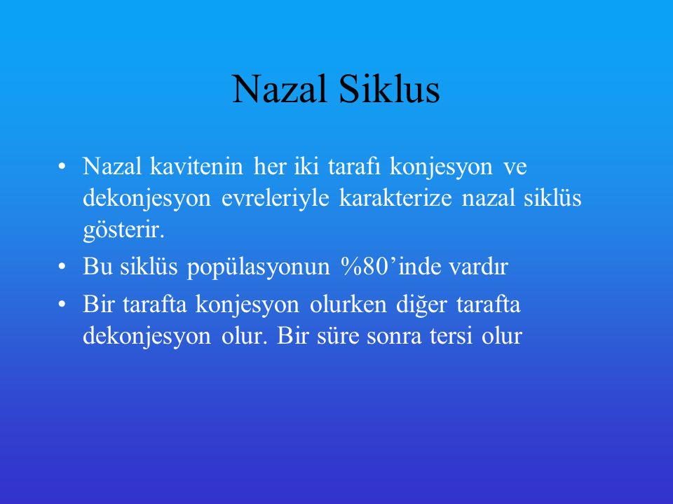 Nazal Siklus Nazal kavitenin her iki tarafı konjesyon ve dekonjesyon evreleriyle karakterize nazal siklüs gösterir.