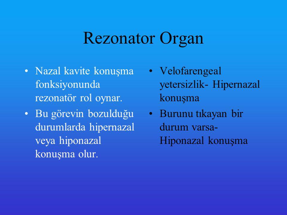 Rezonator Organ Nazal kavite konuşma fonksiyonunda rezonatör rol oynar. Bu görevin bozulduğu durumlarda hipernazal veya hiponazal konuşma olur.