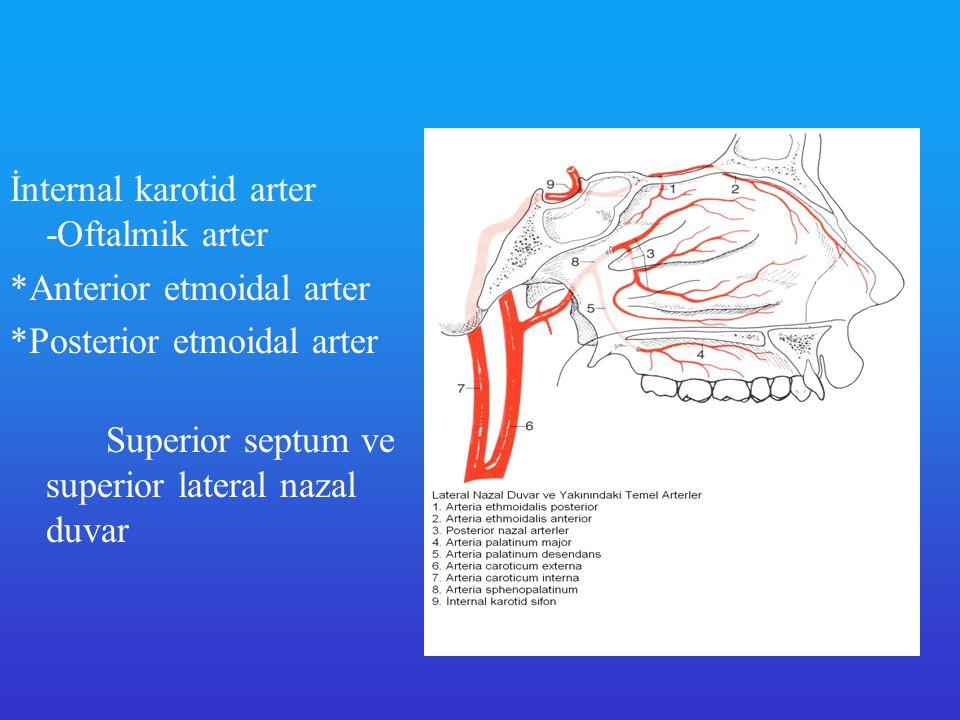 İnternal karotid arter -Oftalmik arter