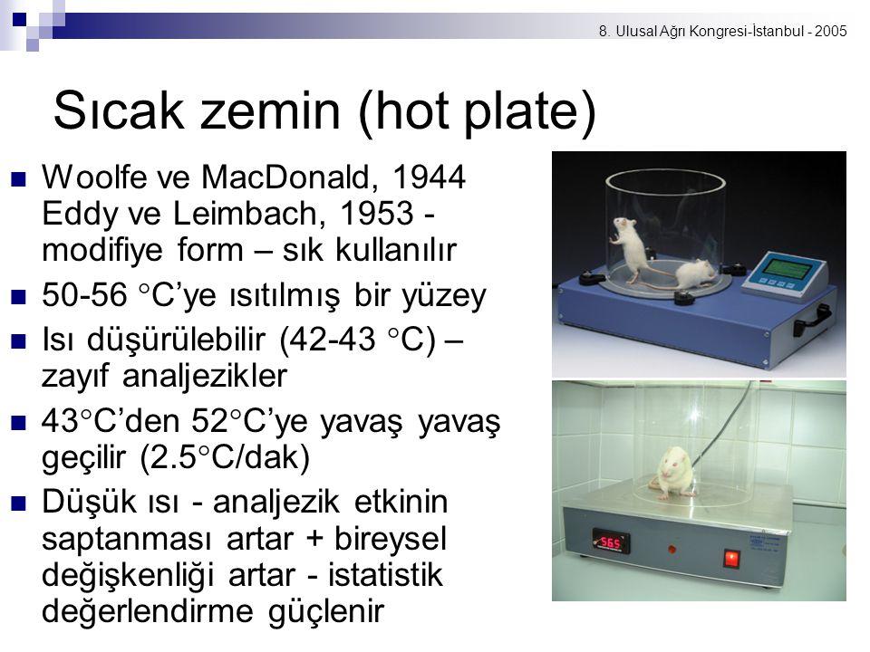 Sıcak zemin (hot plate)