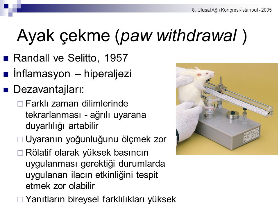 Ayak çekme (paw withdrawal )