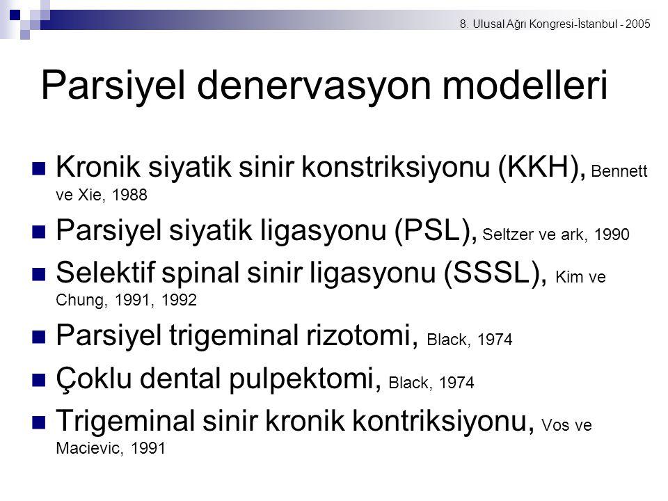 Parsiyel denervasyon modelleri