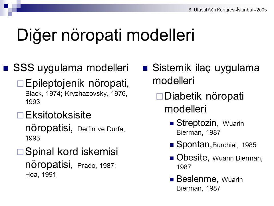Diğer nöropati modelleri
