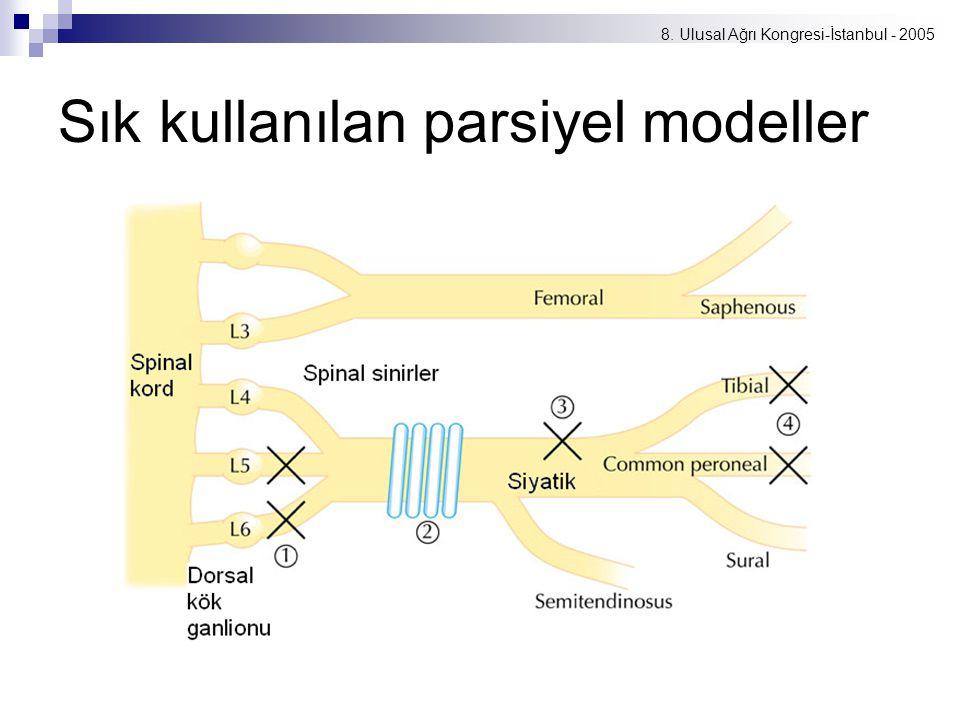 Sık kullanılan parsiyel modeller