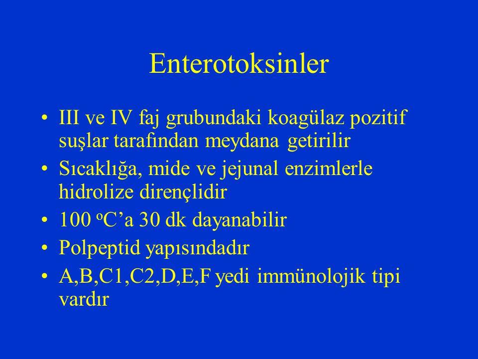 Enterotoksinler III ve IV faj grubundaki koagülaz pozitif suşlar tarafından meydana getirilir.