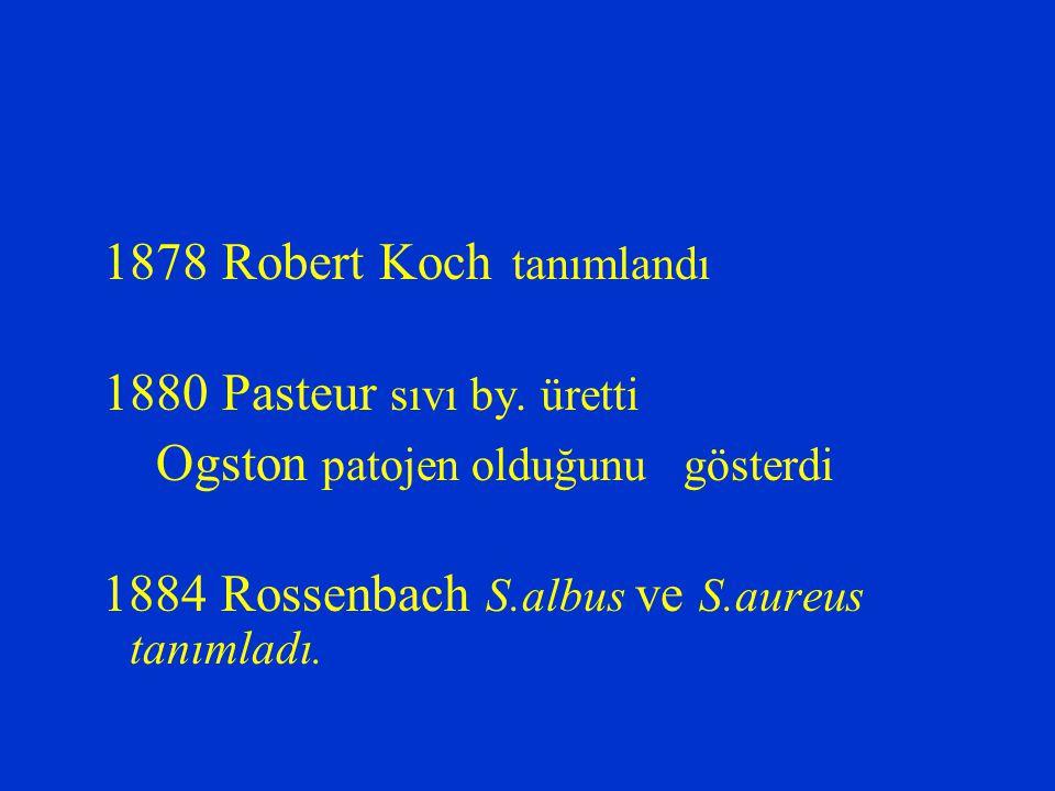 1878 Robert Koch tanımlandı 1880 Pasteur sıvı by. üretti