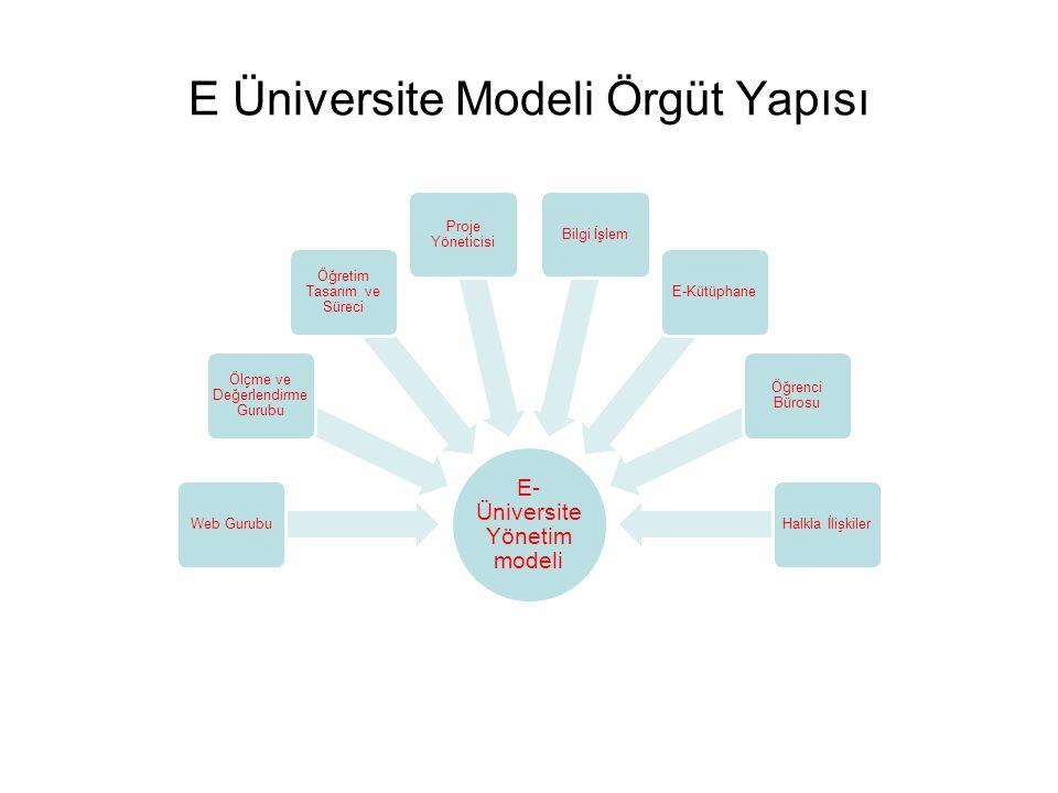 E Üniversite Modeli Örgüt Yapısı