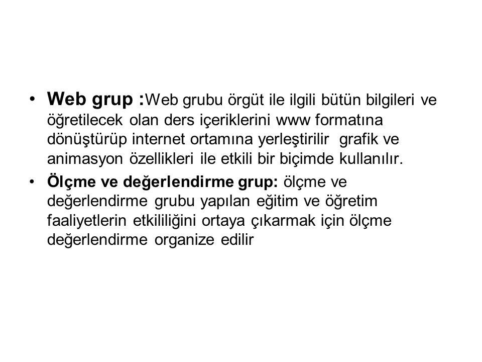 Web grup :Web grubu örgüt ile ilgili bütün bilgileri ve öğretilecek olan ders içeriklerini www formatına dönüştürüp internet ortamına yerleştirilir grafik ve animasyon özellikleri ile etkili bir biçimde kullanılır.