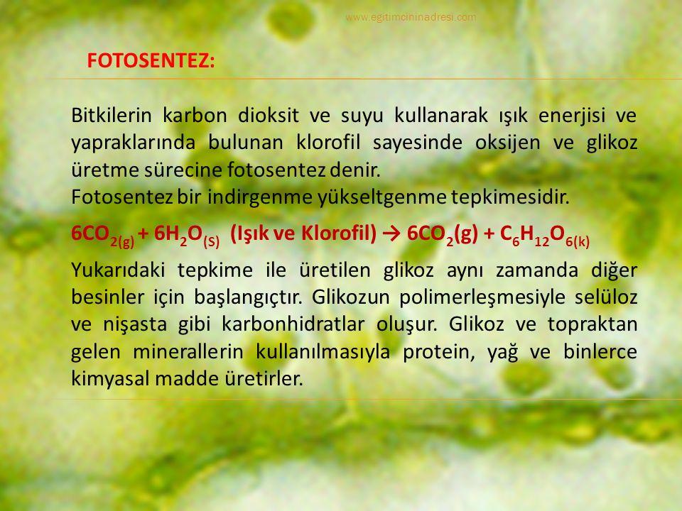 Fotosentez bir indirgenme yükseltgenme tepkimesidir.