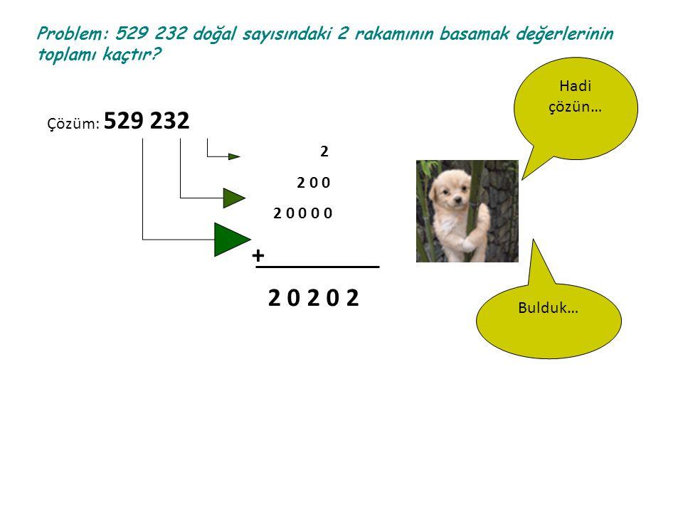 Problem: 529 232 doğal sayısındaki 2 rakamının basamak değerlerinin toplamı kaçtır