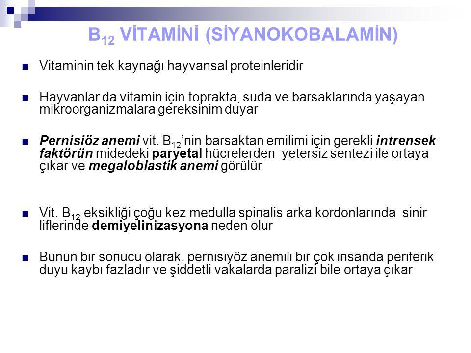 B12 VİTAMİNİ (SİYANOKOBALAMİN)