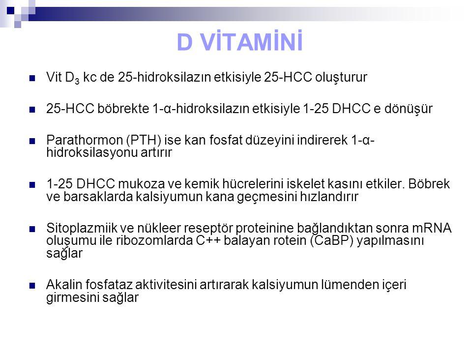 D VİTAMİNİ Vit D3 kc de 25-hidroksilazın etkisiyle 25-HCC oluşturur