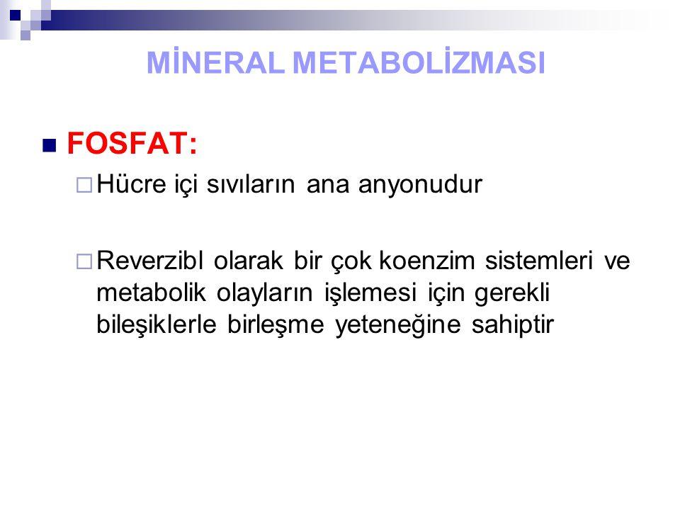 MİNERAL METABOLİZMASI