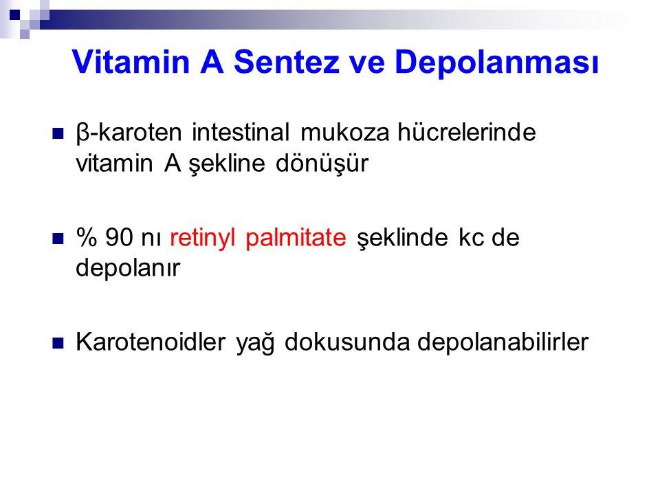 Vitamin A Sentez ve Depolanması