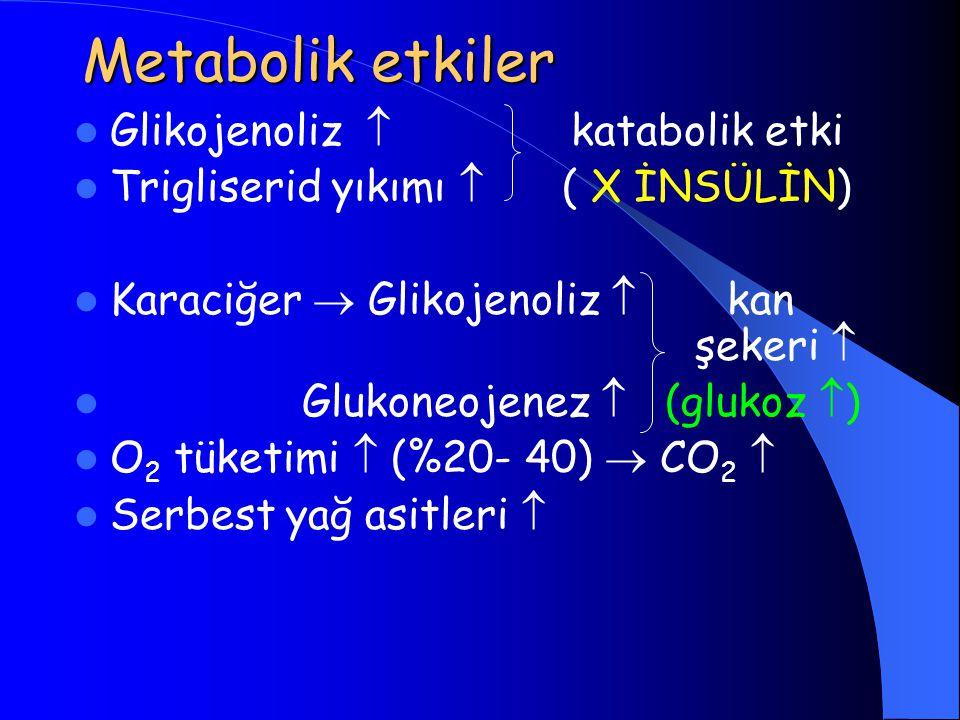 Metabolik etkiler Glikojenoliz  katabolik etki