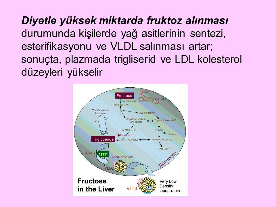 Diyetle yüksek miktarda fruktoz alınması durumunda kişilerde yağ asitlerinin sentezi, esterifikasyonu ve VLDL salınması artar; sonuçta, plazmada trigliserid ve LDL kolesterol düzeyleri yükselir