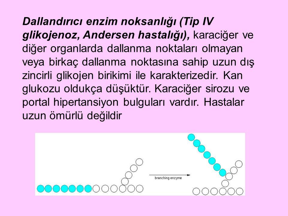 Dallandırıcı enzim noksanlığı (Tip IV glikojenoz, Andersen hastalığı), karaciğer ve diğer organlarda dallanma noktaları olmayan veya birkaç dallanma noktasına sahip uzun dış zincirli glikojen birikimi ile karakterizedir.