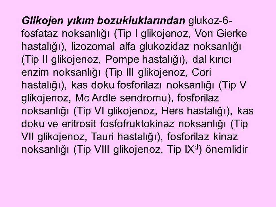Glikojen yıkım bozukluklarından glukoz-6-fosfataz noksanlığı (Tip I glikojenoz, Von Gierke hastalığı), lizozomal alfa glukozidaz noksanlığı (Tip II glikojenoz, Pompe hastalığı), dal kırıcı enzim noksanlığı (Tip III glikojenoz, Cori hastalığı), kas doku fosforilazı noksanlığı (Tip V glikojenoz, Mc Ardle sendromu), fosforilaz noksanlığı (Tip VI glikojenoz, Hers hastalığı), kas doku ve eritrosit fosfofruktokinaz noksanlığı (Tip VII glikojenoz, Tauri hastalığı), fosforilaz kinaz noksanlığı (Tip VIII glikojenoz, Tip IXd) önemlidir