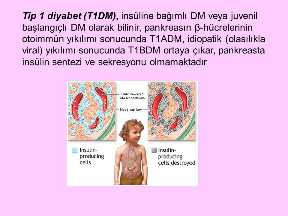 Tip 1 diyabet (T1DM), insüline bağımlı DM veya juvenil başlangıçlı DM olarak bilinir, pankreasın β-hücrelerinin otoimmün yıkılımı sonucunda T1ADM, idiopatik (olasılıkla viral) yıkılımı sonucunda T1BDM ortaya çıkar, pankreasta insülin sentezi ve sekresyonu olmamaktadır