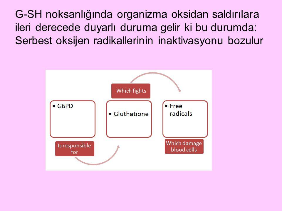 G-SH noksanlığında organizma oksidan saldırılara ileri derecede duyarlı duruma gelir ki bu durumda: Serbest oksijen radikallerinin inaktivasyonu bozulur