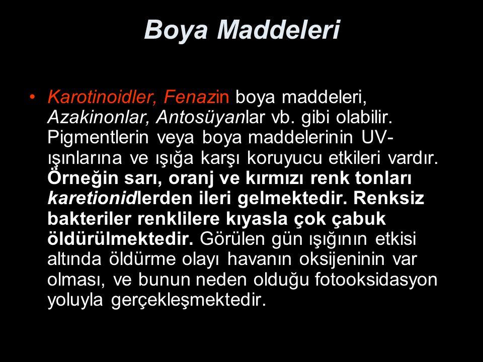 Boya Maddeleri