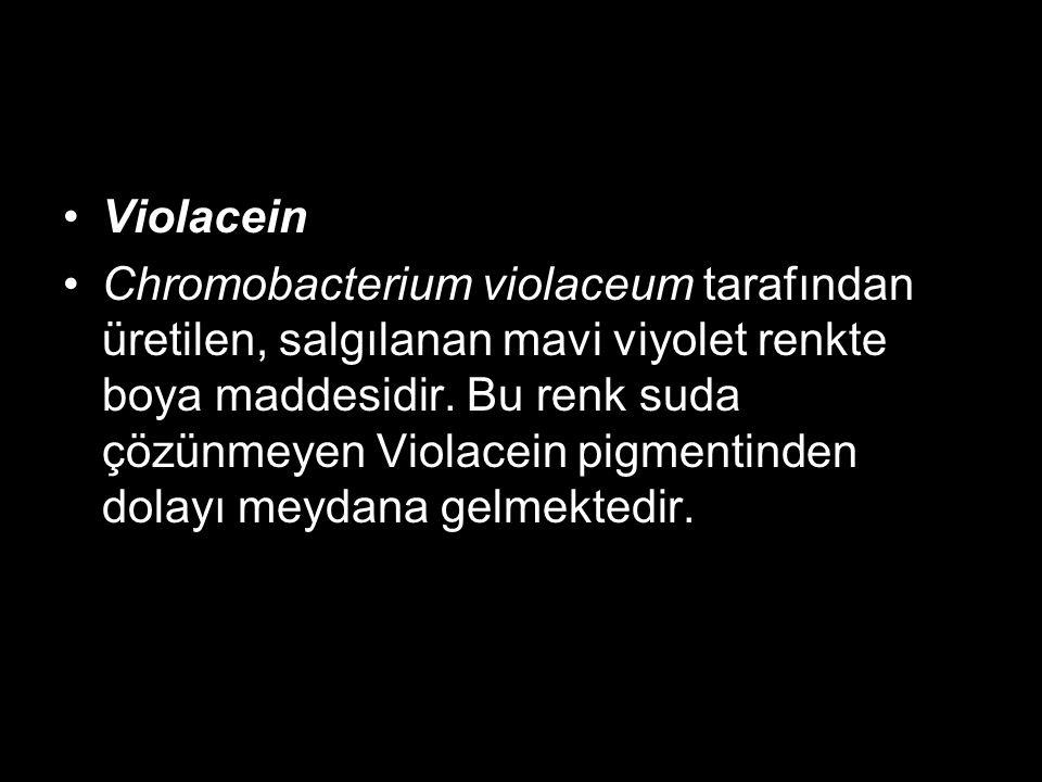 Violacein