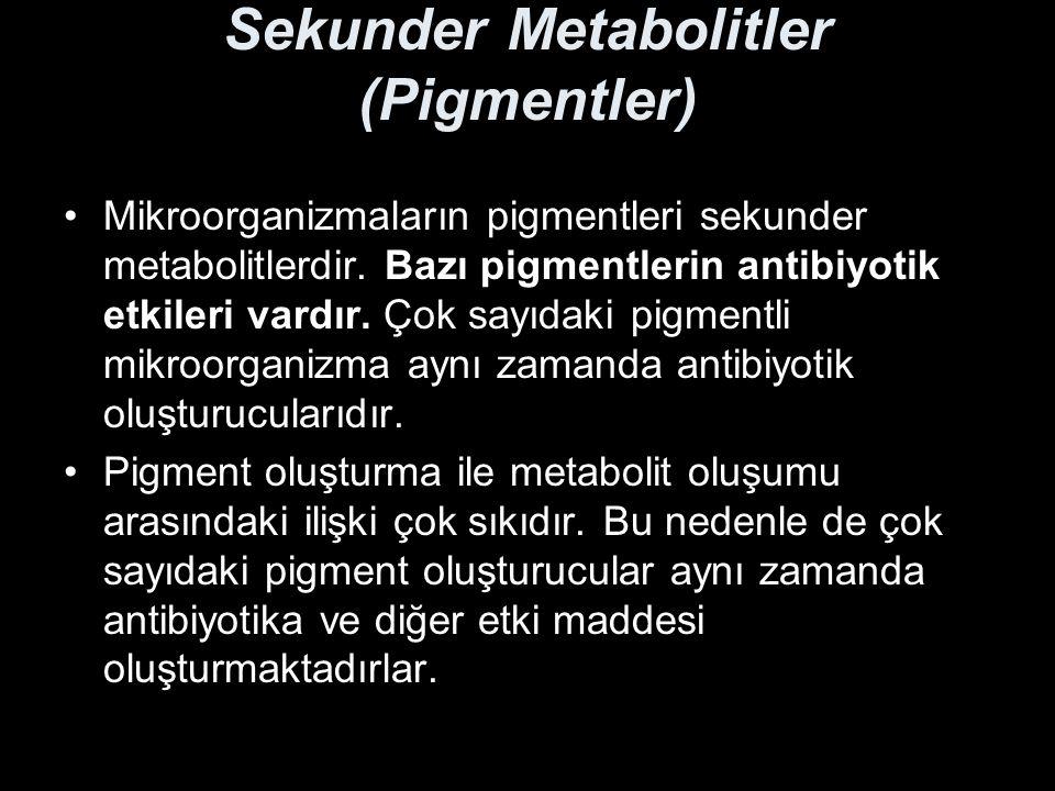 Sekunder Metabolitler (Pigmentler)