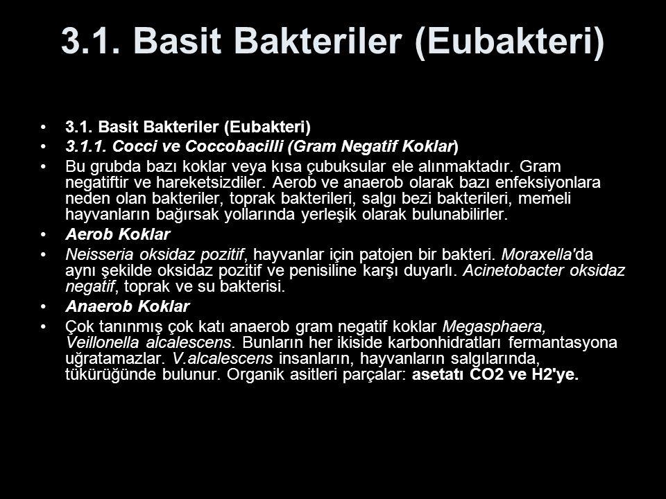 3.1. Basit Bakteriler (Eubakteri)