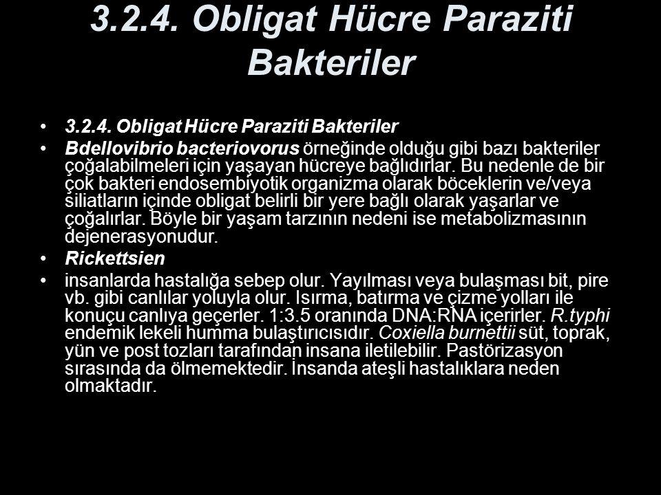 3.2.4. Obligat Hücre Paraziti Bakteriler