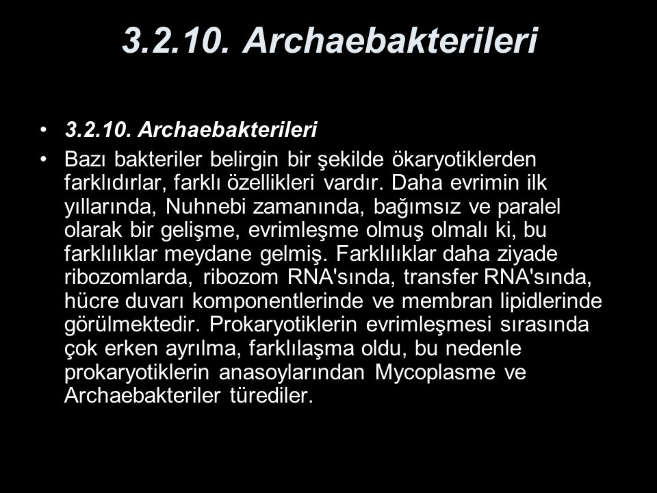 3.2.10. Archaebakterileri 3.2.10. Archaebakterileri