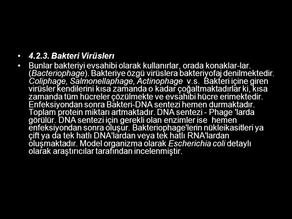 4.2.3. Bakteri Virüslerı