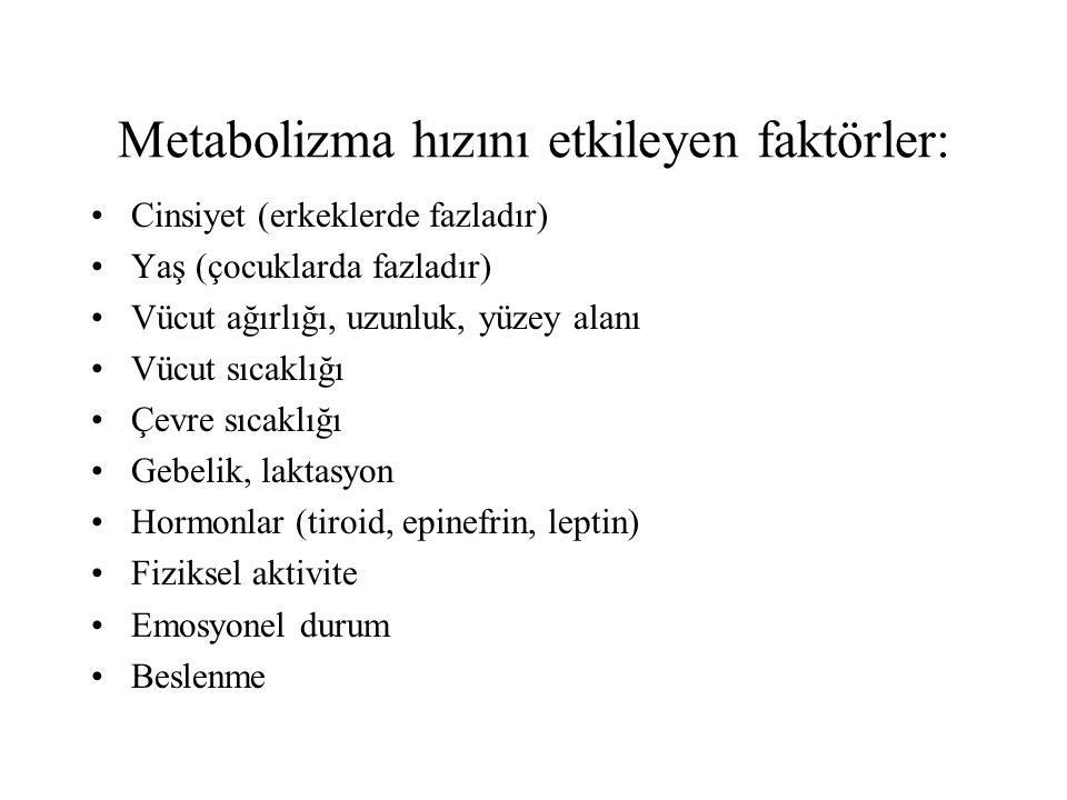 Metabolizma hızını etkileyen faktörler:
