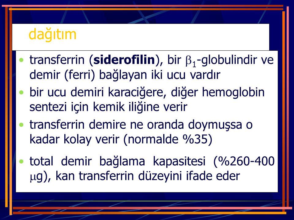 dağıtım transferrin (siderofilin), bir 1-globulindir ve demir (ferri) bağlayan iki ucu vardır.