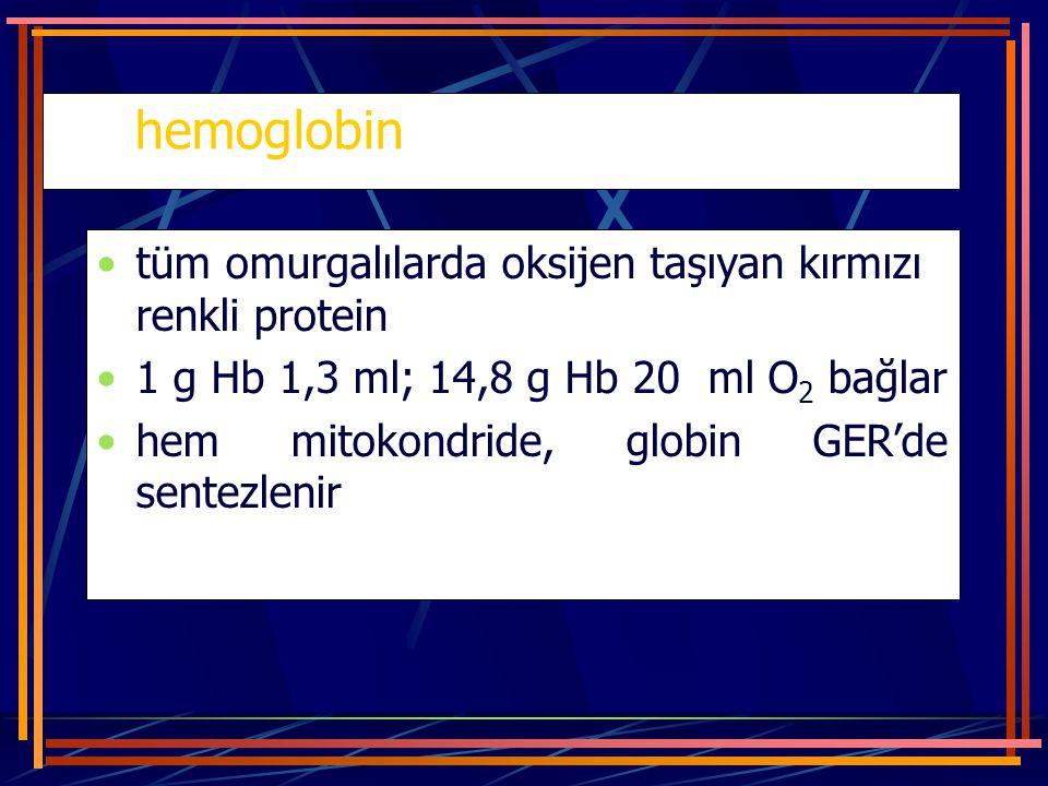 hemoglobin tüm omurgalılarda oksijen taşıyan kırmızı renkli protein