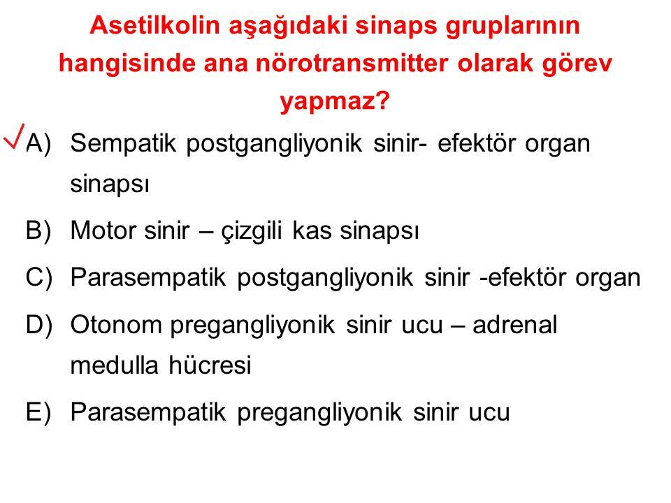 Asetilkolin aşağıdaki sinaps gruplarının hangisinde ana nörotransmitter olarak görev yapmaz