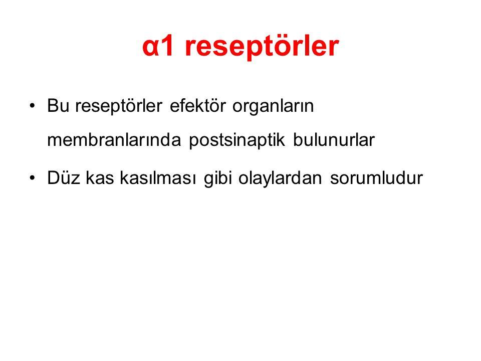 α1 reseptörler Bu reseptörler efektör organların membranlarında postsinaptik bulunurlar.