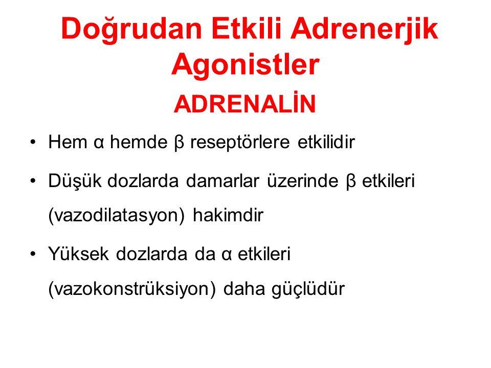 Doğrudan Etkili Adrenerjik Agonistler