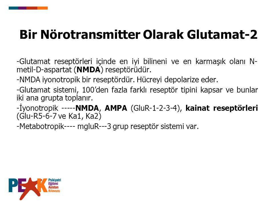 Bir Nörotransmitter Olarak Glutamat-2