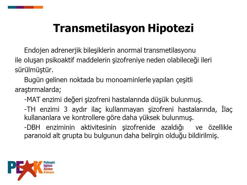Transmetilasyon Hipotezi