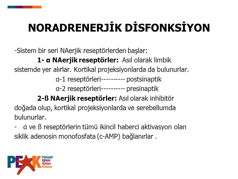 NORADRENERJİK DİSFONKSİYON