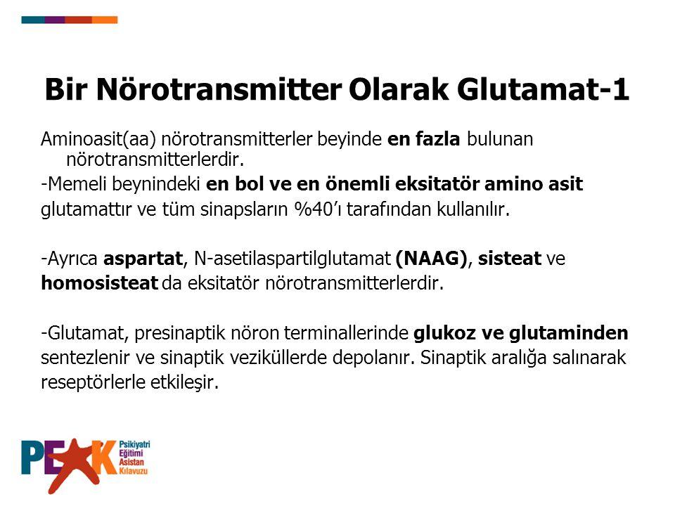Bir Nörotransmitter Olarak Glutamat-1