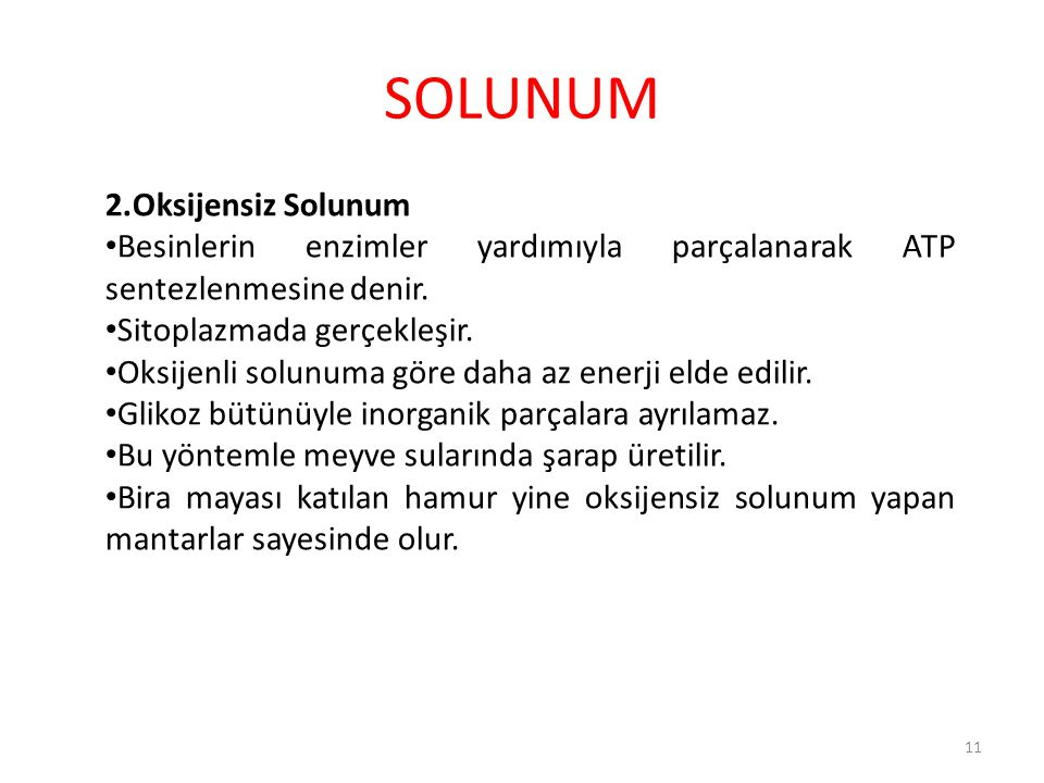 SOLUNUM 2.Oksijensiz Solunum