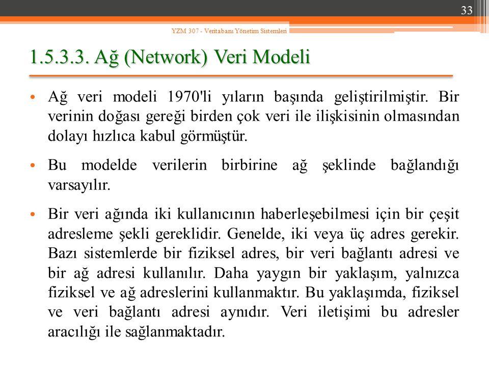 1.5.3.3. Ağ (Network) Veri Modeli