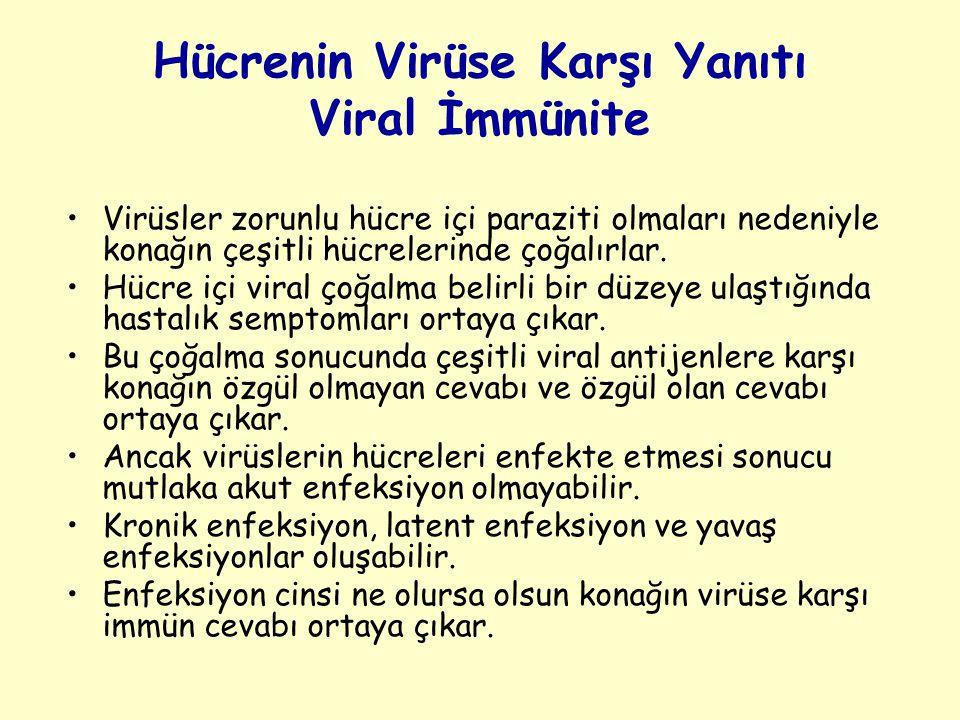 Hücrenin Virüse Karşı Yanıtı Viral İmmünite